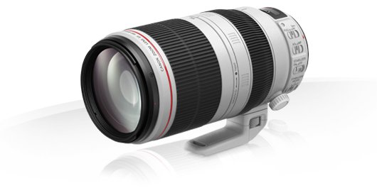 Canon EF 100-400mm f/ 4,5-5,6 L IS